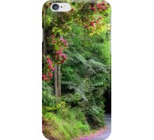 Spring on The Avenue - Mt Wilson NSW iPhone Case/Skin