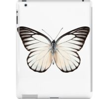 Butterfly species Prioneris philonome iPad Case/Skin