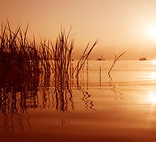Morning in  the Sea of Galilee by Peter Frank