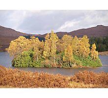 Autumn tree island Photographic Print