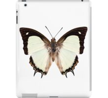 Butterfly species Polyura jalysus iPad Case/Skin