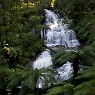 Triplet Falls, Otways, Victoria by B.J. Robertson