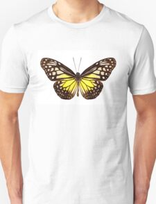 """Butterfly species Parantica aspasia common name """"Yellow Glassy Tiger"""" T-Shirt"""