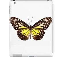 """Butterfly species Parantica aspasia common name """"Yellow Glassy Tiger"""" iPad Case/Skin"""