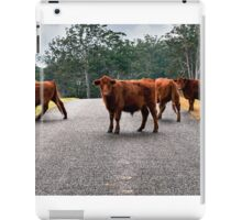 Outback Cows  iPad Case/Skin