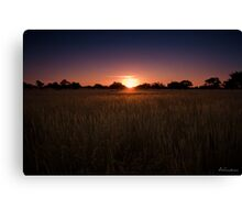 Colourful Kalahari Sunsets Canvas Print