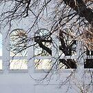 mid winter's reflection by Karen E Camilleri