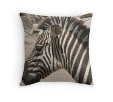 Zebra in the striped pajamas Throw Pillow