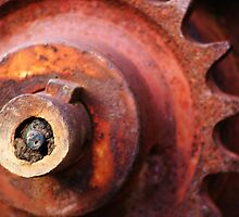 Cog-wheel by Peter Frank