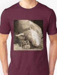 Taking Forty Winks Unisex T-Shirt