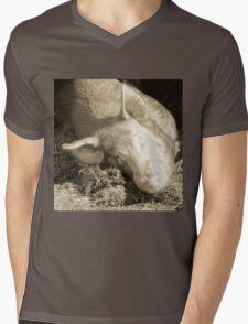 Taking Forty Winks Mens V-Neck T-Shirt