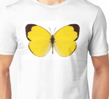 "Butterfly species Eurema alitha ""grass yellow"" Unisex T-Shirt"