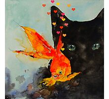 Black cat and the Gold fish,,Enjoy ! Photographic Print