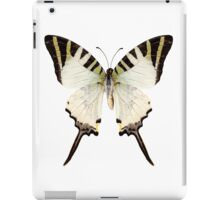 Butterfly species Graphium antiphates iPad Case/Skin
