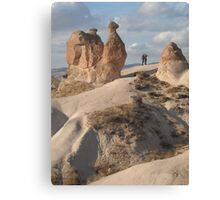 Stone Camel - Capadoccia Turkey Canvas Print