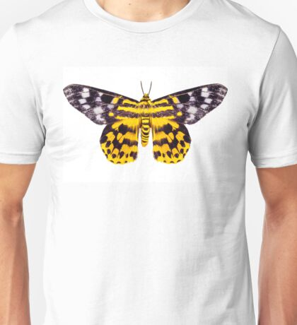butterfly moth Dysphania subrepleta isolated  Unisex T-Shirt