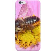 Leaf Cutter Bee iPhone Case/Skin