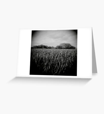 green grass - loupe Greeting Card