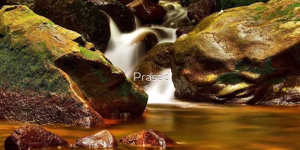 Listen...the stream of joy flows within #3 by Prasad