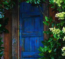 The Blue Door by Mattie Bryant
