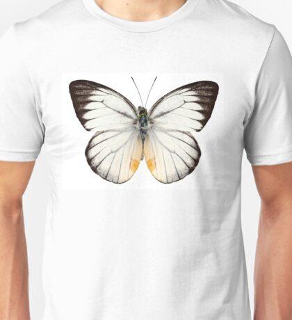 White butterfly species Delias baracasa Unisex T-Shirt