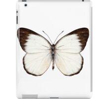 Butterfly species Delias belisama iPad Case/Skin