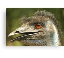 Dirty Emu Canvas Print