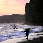 HIve Beach by SWEEPER
