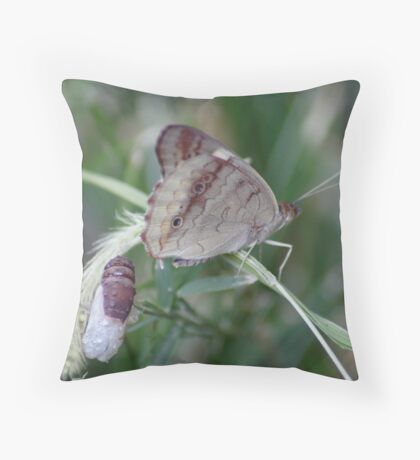 Buckeye - Just Hatched Throw Pillow