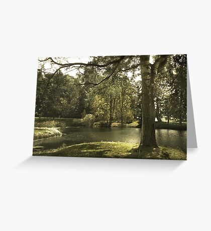 In The Shadow In The Light Greeting Card