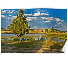 Evening at Blanchard Lake Poster