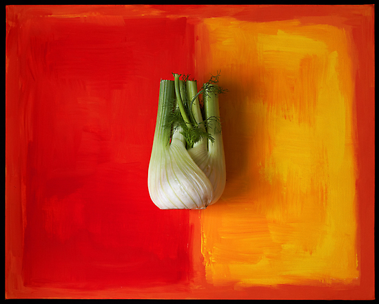fennel by Dave Milnes