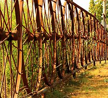 The Wheel Fence by Susan Blevins