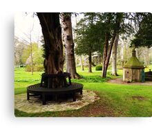 St Mary's well and seat Canvas Print
