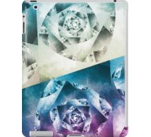 Where the Sky Meets the Ocean iPad Case/Skin