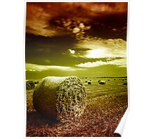 Welcome to Hay Ball Poster