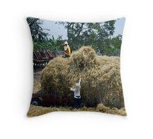 Hay ! Throw Pillow