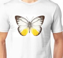 "Butterfly species Cepora judith ""orange gull"" Unisex T-Shirt"