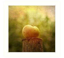 Portrait of an Apple Art Print