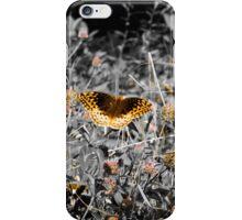 Gloden Butterfly iPhone Case/Skin
