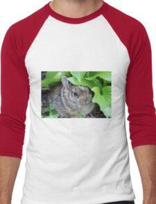 Baby Rabbit Men's Baseball ¾ T-Shirt