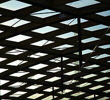 henrys roof. hobart - tasmania by tim buckley | bodhiimages
