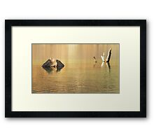 Rock Tree Water - Lago Azul Framed Print