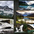 Canadian Rockies Collage by Teresa Zieba