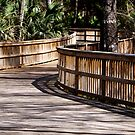winding walkway by Ted Petrovits