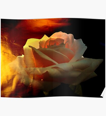 Rose for You. Poster