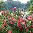 Red Flowers in Front of Lake by Joseph Green
