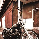 HD Street Bob by crooky