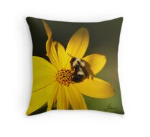 The Methotical Bumble Bee Throw Pillow