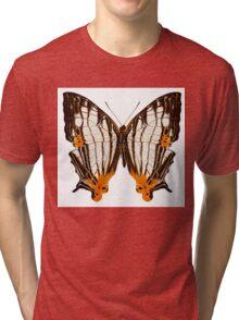 Butterfly species Cyrestis lutea martini Tri-blend T-Shirt